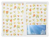 Рулонные шторы Мини - Мультифрут на пластиковые окна