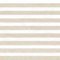 Рулонные шторы День-Ночь - Альто 2745